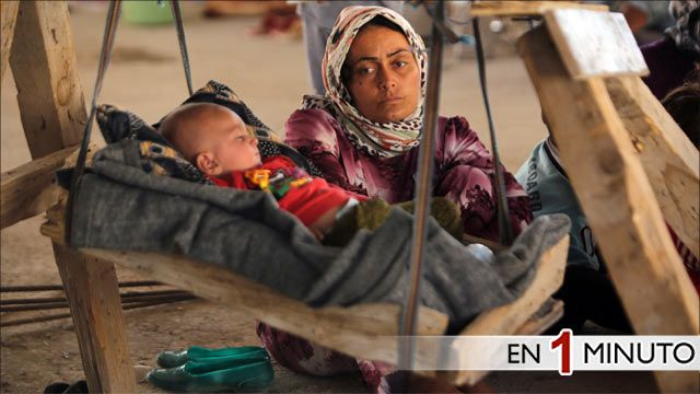 Yazidis desplazados