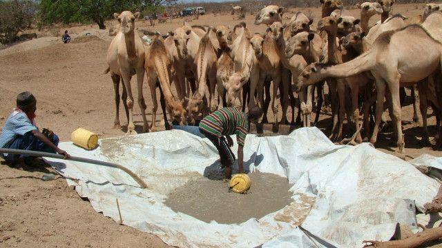Tana River Drought