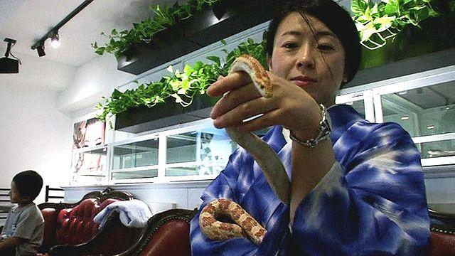 Посетительница кафе со змеей на руке