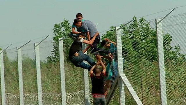 Забор на границе с Венгрией не останавливает мигрантов