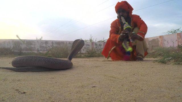 सपेरे जोगी पाकिस्तान